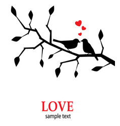 birds in love on a branch vector image