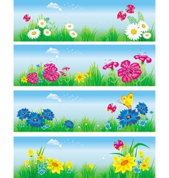 banners with flowers in meadow vector image