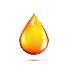 Beautiful drop of oil vector image