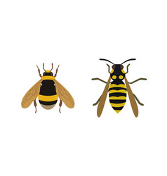 Insect icon flat isolated nature flying honey bee vector