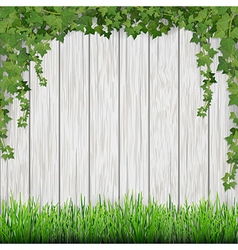 ivy and grass on wood vector image