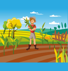 male farmer harvesting crop cultivated vector image