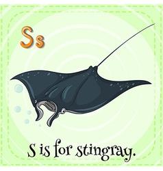 Stingray vector