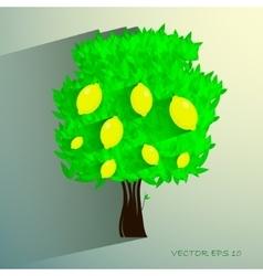 Lemon tree isolated on white background vector