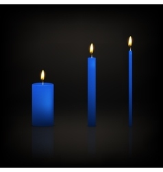Candle set vector