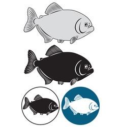 piranha fish vector image vector image