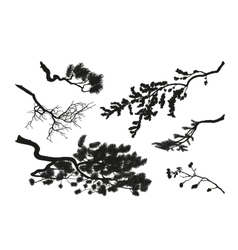 The branches of trees black silhouette vector