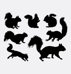 Squirrel animal silhouettes vector