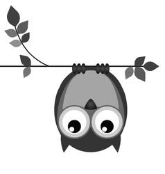 OWL LOOKING DOWN vector image vector image