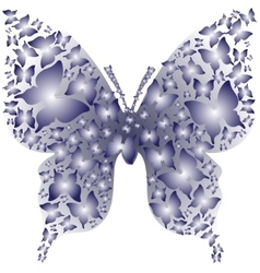 Stencil asymmetry blue outline butterfly from vector image