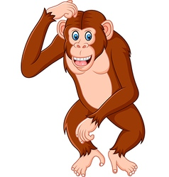 Chimpanze cartoon thinking vector image