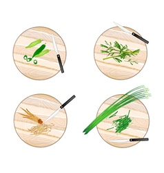 Garlic chives water mimosa okra and fingerroot vector