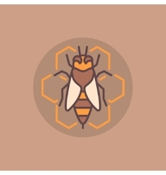 Bee and honeycomb flat icon vector