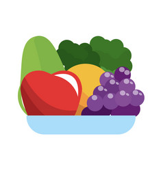 healthy fruits icon vector image