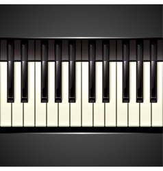 piano key vector image