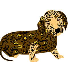 Dog of breed a dachshund an animal with a pattern vector