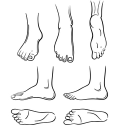 feet vector image vector image