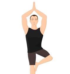 Man in yoga tree pose vector