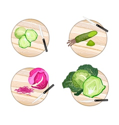 Brussels sprout savoy cabbage purple cabbage vector