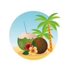 Summer design Holidays icon Colorfull vector image vector image