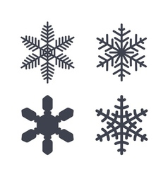 Christmas snowflakes isolated vector