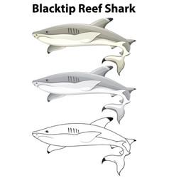 doodle animal for blacktip reef shark vector image