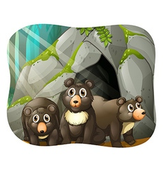 Grizzly bears living in the cave vector image