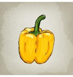 Fresh yellow bell pepper vector image vector image