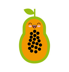 Paw paw fruit icon vector