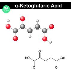 Ketoglutaric acid molecule vector
