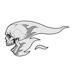 Skull with flames fliying vector