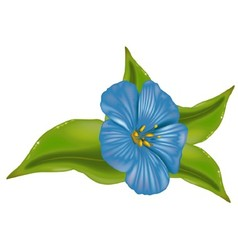 Blue Flower With Leafs vector image