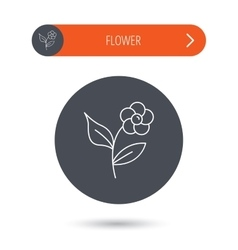 Flower with petals icon Plant with leaves sign vector image