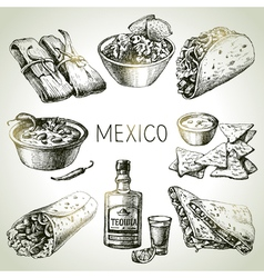 Mexican traditional food Hand drawn sketch vector image