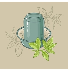 Tea pair vector