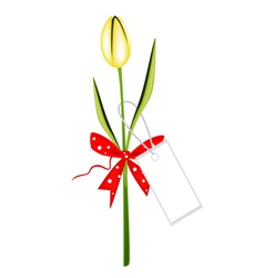 A Fresh Yellow Tulip with Red Ribbon vector image