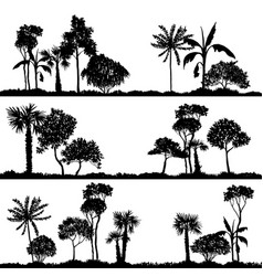 Landscape with palm trees vector