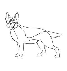 Shepherd single icon in outline style dog vector