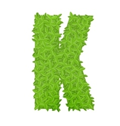 Uppecase letter k consisting of green leaves vector