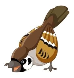 Cartoon smiling sparrow vector image