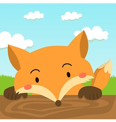 Close up cute red fox cartoon vector