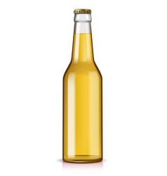 glass beer bottle vector image