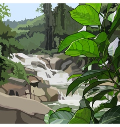 Landscape mountain river in thickets vector image vector image
