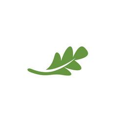 Oak leaf icon design template vector