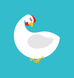 White hen isolated farm chicken bird on blue vector