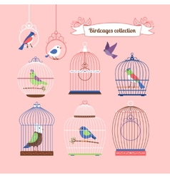 Birds and birdcages vector