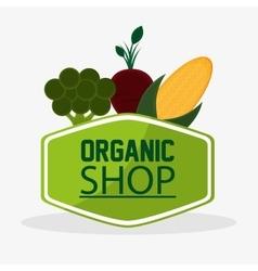 Broccoli beet organic shop meal natural vegan vector