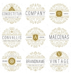 Luxury logo templates set in vintage style vector image vector image