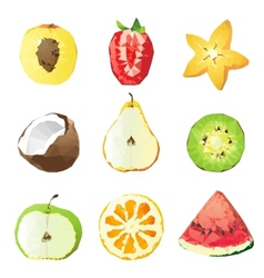 fruit pieces vector image