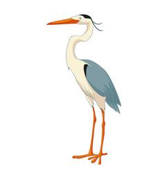 cartoon smiling heron vector image vector image